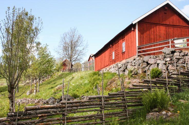 Rote Scheunen und Bauernhäuser in Asens http://www.travelworldonline.de/traveller/ein-hauch-von-bullerbue-und-loenneberga-in-asens/?utm_content=buffer6450e&utm_medium=social&utm_source=pinterest.com&utm_campaign=buffer ... #sweden #schweden #sverige #smaland