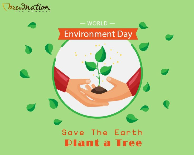 On this World Environment day, let's pledge to do our bit to save our planet from the Environmental changes it is going through.   #WorldEnvironmentDay #earth #environment #change #BrewNationTea #tealover #teaoftheday #instatea #teaddict #ilovetea #teatime #tealife #tealeaves #chaitea #blacktea #aromatictea #aroma #fresh