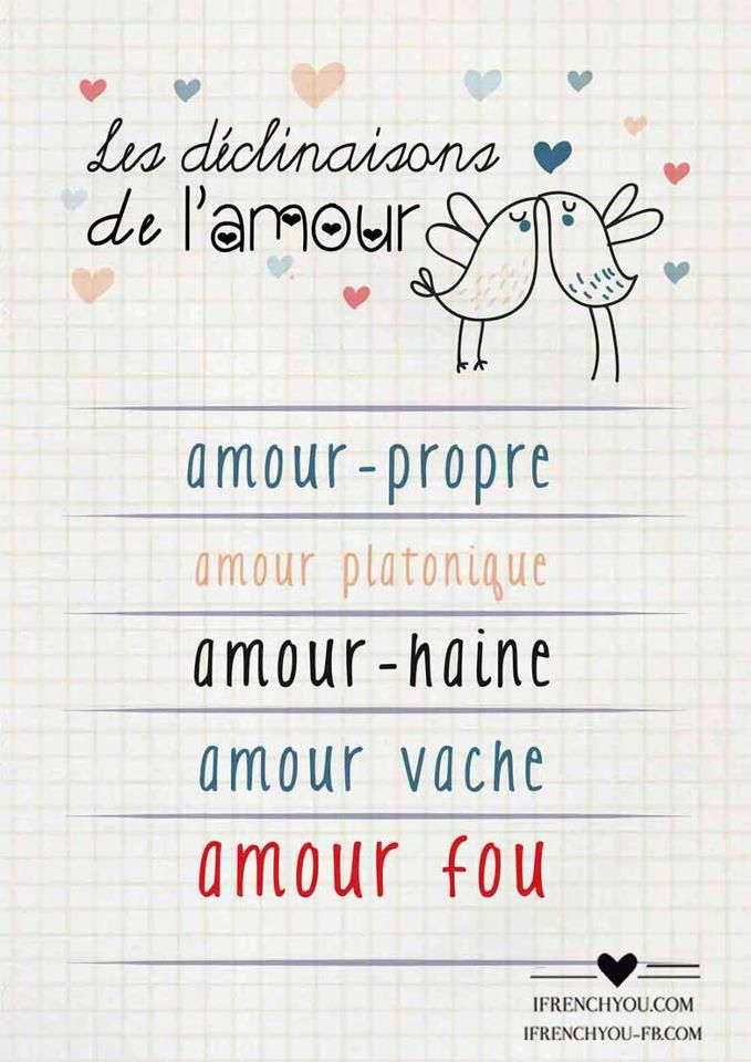 Les déclinaisons de l'amour-The types of love:amour-propre-self-love/amour platonique - platonic love/amour vache-tough love/amour-haine- love-hate/amour fou-crazy love