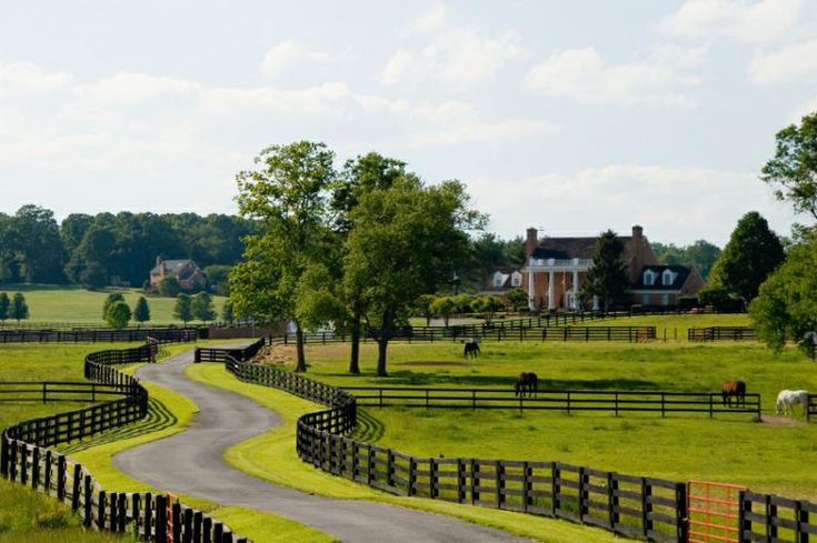 Wonder if I can talk LB into a horse farm like this? Maybe when pigs fly--but it's nice to dream!