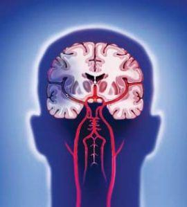При развитии острого нарушения мозгового кровообращения самого пациента и его родственников часто волнует вопрос – каков прогноз после инсульта и можно ли какими-то лечебными или реабилитационными мероприятиями его изменить (естественно, в лучшую сторону) и какие действия могут нанести человеку непоправимый вред.