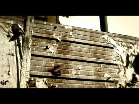 Un brano ad Impatto Zero, una canzone per il pianeta. Uscito il 22 in occasione della 39 giornata mondiale della terra, questo singolo de i RIO vede la partecipazione straordinaria di Fiorella Mannoia e Paolo Rossi. #ambiente #inquinamento #ecobellusco