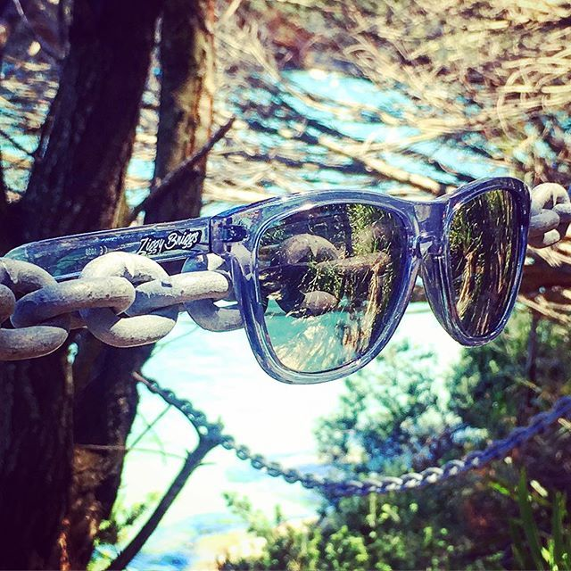 Our All New Shady Gray's just hanging out for the weekend!! #sun #sunglasses #summer #instacool #hangingout #weekendsalmosthere #loveit #sydneysummer #australiansummer #instalike #styling #australia #ziggybriggs #theshadylife