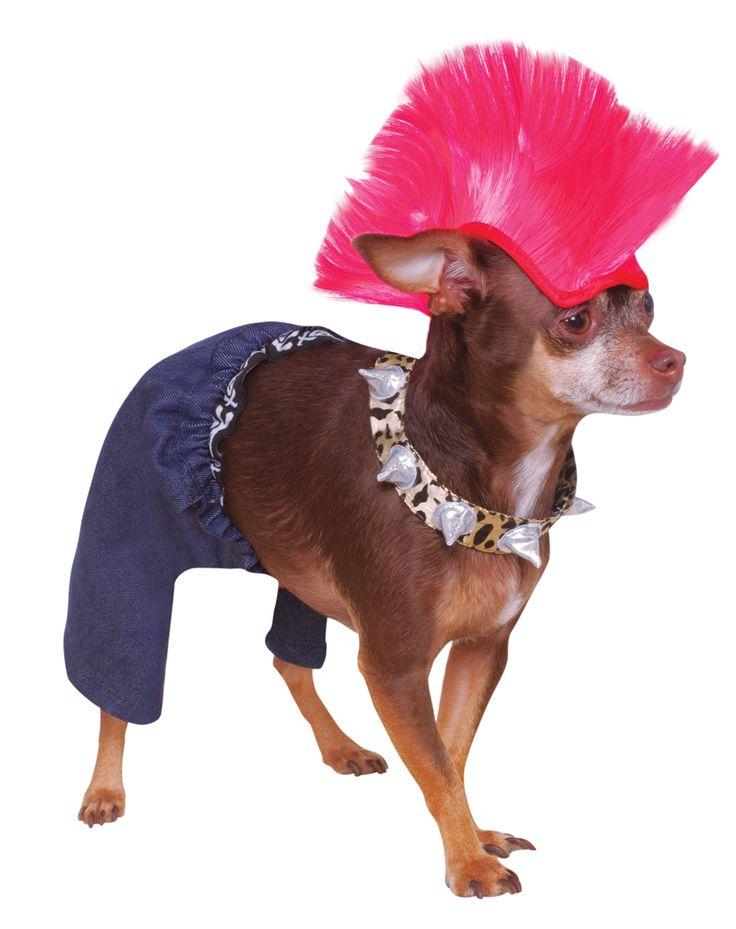 Punk Rocker Pet Costume | For the pups | Pinterest | Pet ...
