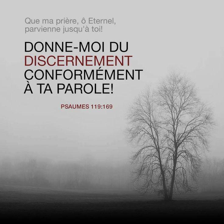 La Bible - Versets illustrés - Psaume 119:169 - Que ma prière parvienne jusqu'à toi, Eternel! Donne-moi du discernement conformément à  ta parole!