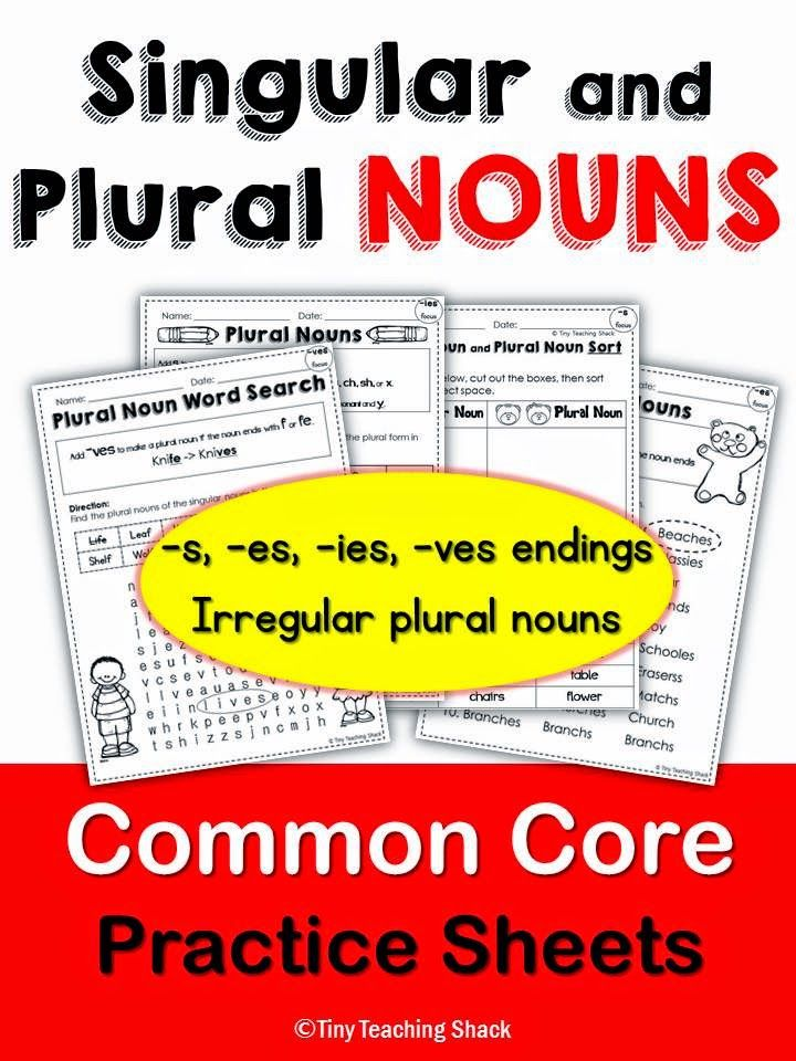 singular and plural noun common core practice for 1st and ...