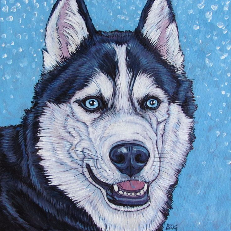 """Toli the Siberian Husky Dog in Snow Custom Pet Portrait Painting in Acrylic on 12"""" x 12"""" Canvas from Pet Portraits by Bethany."""