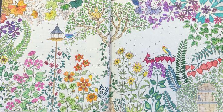 03. Jardim Secreto. Livro de Colorir.
