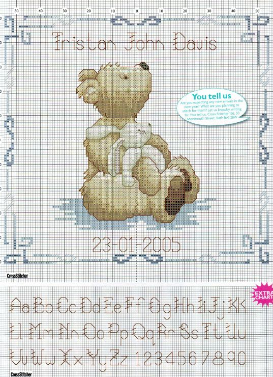 Teddy Birth Sampler 3/3