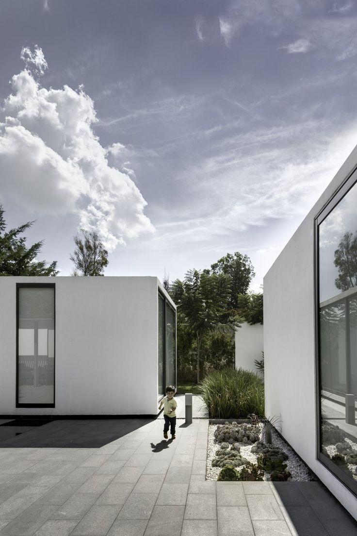 Minimalistische tuin of moderne tuin