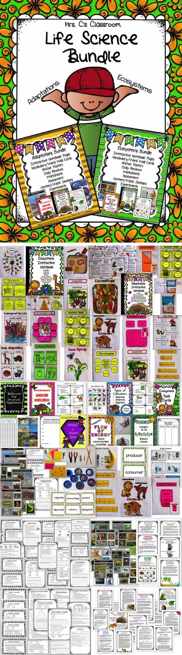 LIFE SCIENCE BUNDLE!   GREAT VALUE! My two life science unit bundles, ADAPTATIONS and ECOSYSTEMS are combined to create this huge bundle.  It includes practically everything you need to teach both units.   Included are interactive notebooks (with information anchor posters to match the teacher's posters), experiments, science centers/work stations, daily reviews, anchor posters, real-life picture examples, worksheets, pre/post assessments, and vocabulary word walls.