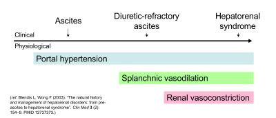 Diagram: ascites, diuretic-resistant ascites and hepatorenal syndrome are a spectrum of clinical features. Portal hypertension is associated with all three. Splanchnic vasodilation is associated with all but ascites. Kidney vasoconstriction is associated only with HRS.