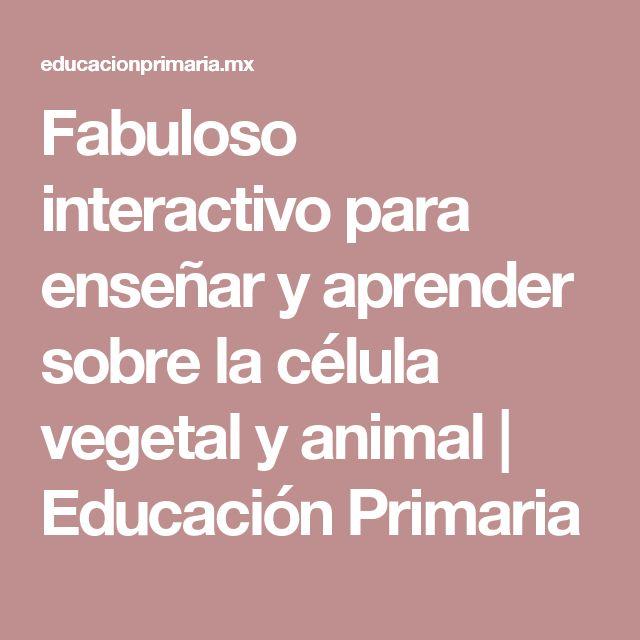 Fabuloso interactivo para enseñar y aprender sobre la célula vegetal y animal | Educación Primaria