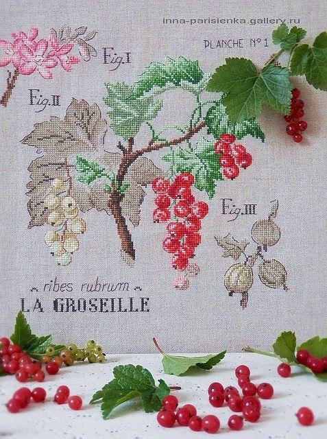 Gallery.ru / Фото #3 - Etudes botaniques - inna-parisienka