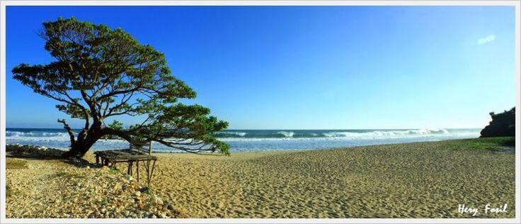 Pantai Pok Tunggal dengan pohon | Pok Tunggal Beach - Yogyakarta
