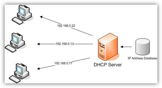 Pengertian dan Fungsi DHCP Server.