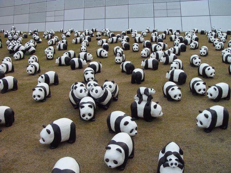 1600 panda+at 동대문 DDP 디자인플라자