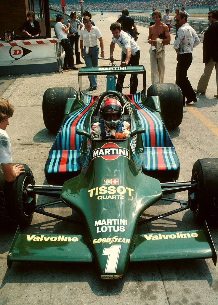 Mario Andretti /Ford-Lotus  1979.  Nazareth, PA's very own.  The only one who REALLY drove them all winning a F1 Championship.  The only American driver to accomplish the feat.