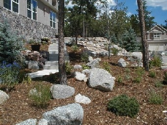 sparse plants and rocks with mulch/bark