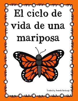 El ciclo de vida de una mariposa - Life Cycle of a Butterf