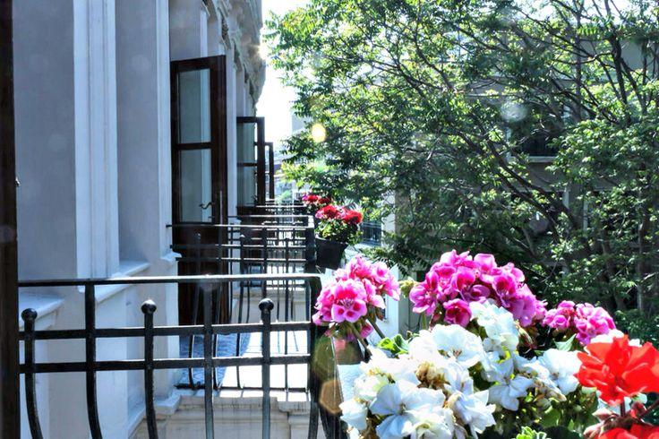 Hotel back street room balcony: http://www.troyahotelbalat.com  #hotel #Istanbul #holiday #flowers