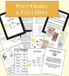 Food Chains and Food Webs  5Es Lesson Plan/Activities, include: Inquiry Sorts for Food Chains Science Journals Vocabulary Concept Cards Sorts for Food Webs Variety of Assessments Real examples (photos) Learning Targets Posters/Visuals Defined Visulas Worksheets/Printables PART 2 OF 3 UNITS