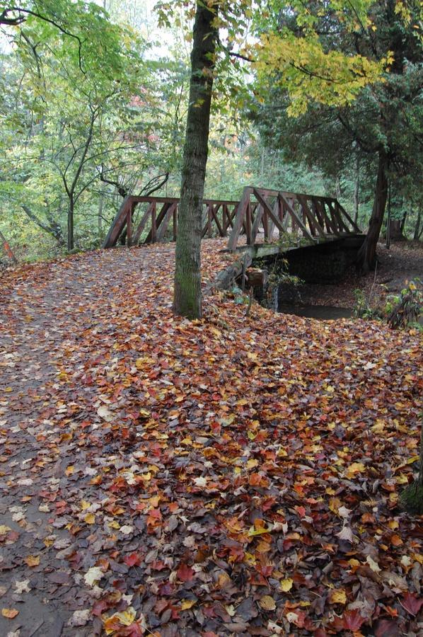 Fall Bridge, Bolton, Caledon, Ontario, Canada