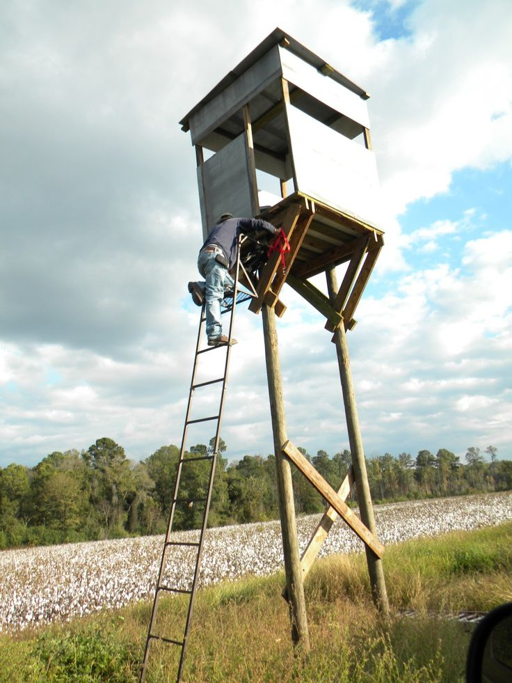 Best 25 Deer Stand Plans Ideas On Pinterest Hunting