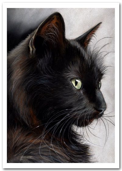 Luna one of my Cats Black Cat Portrait by art-it-art.deviantart.com on @deviantART..Pastel Painting on Artist Paper. 8 x 12 inches....DIN A4