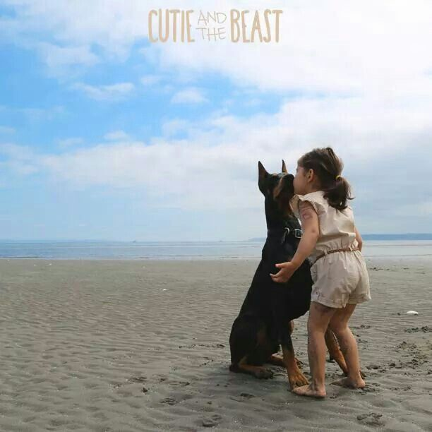 Cutie and the beast at the beach