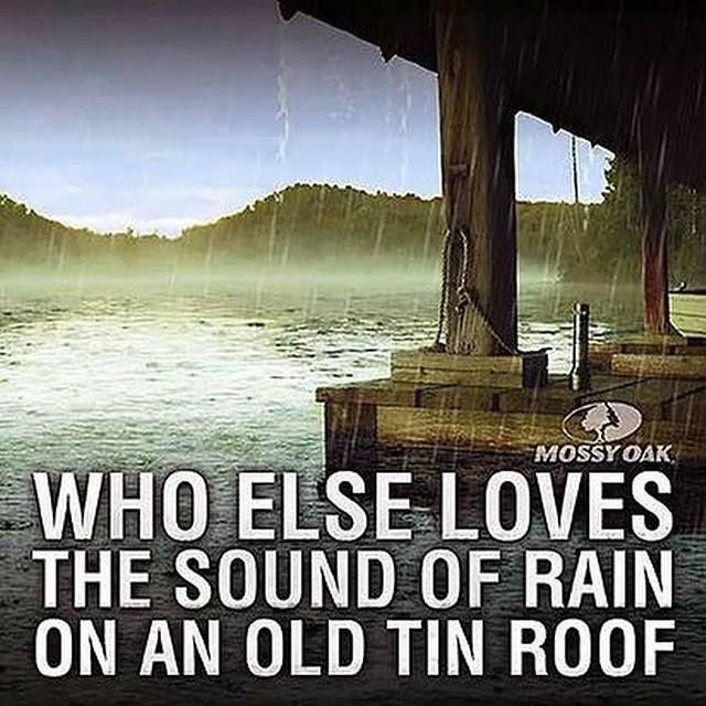 #Quotes #Texas #Tin #Roofs #Homes #Rain #Country #Western #Rustic