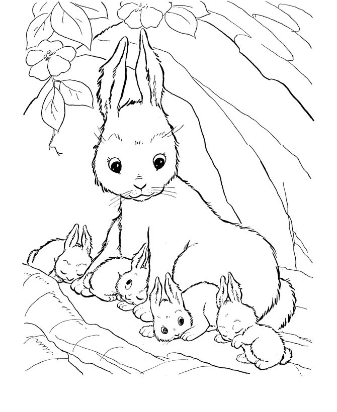 farm animal coloring page mommy rabbit and her baby rabbits - Bunny Rabbit Coloring Pages Print