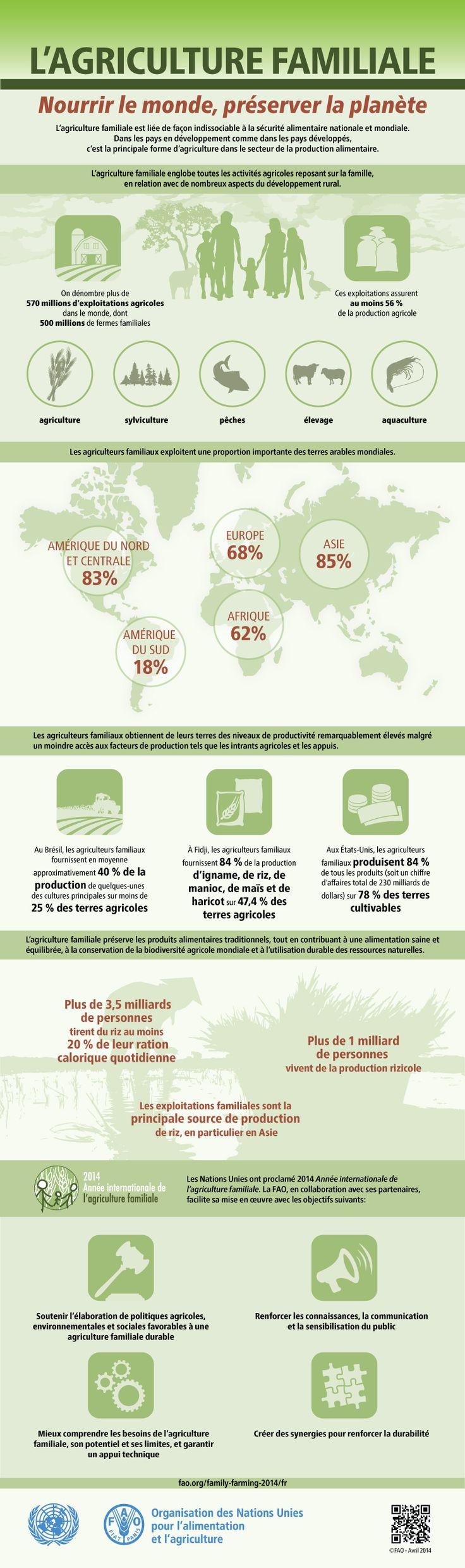 Infographie de la FAO : L'agriculture Familiale: Nourrir le monde, préserver la planète