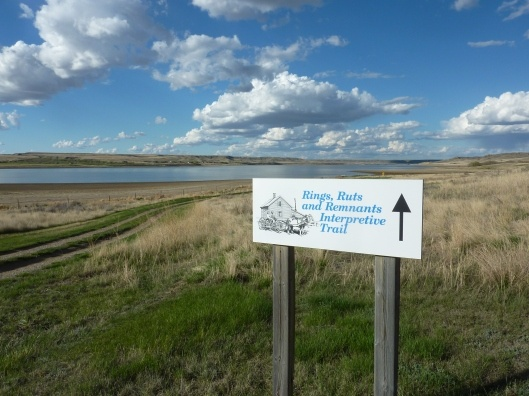 Rings, Ruts and Remnants - an easy/informative hike to do at Lake Diefenbaker #childfriendly