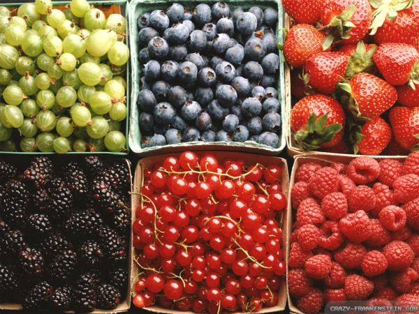 Why You Should Eat Fruit Every Day No Matter What