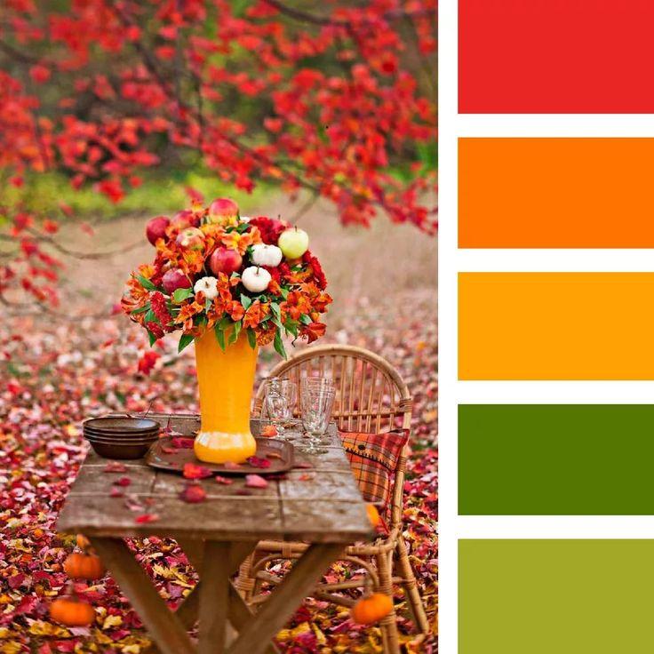 Сочетание красок-цветов в картинках