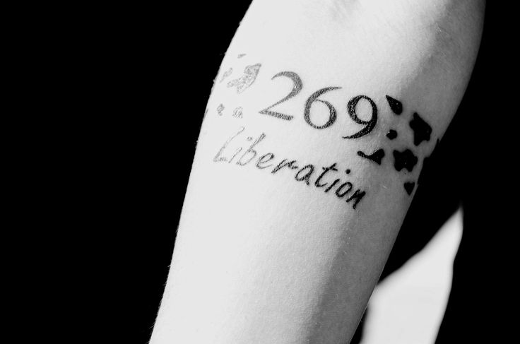 17 best images about 269 tag on pinterest perspective for Vegan tattoo 269