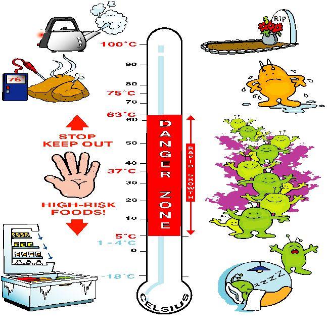 Bacteria and Temperature