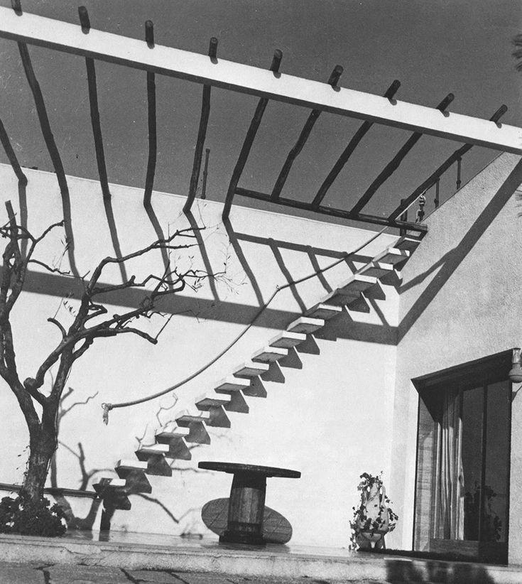Paradise Backyard. walled courtyard, render, timber pergola / screening.