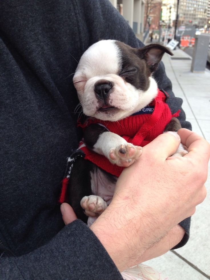 Too tired to enjoy her first day out in the city.