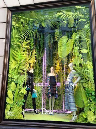 Decoração verde: o uso de plantas em lojas