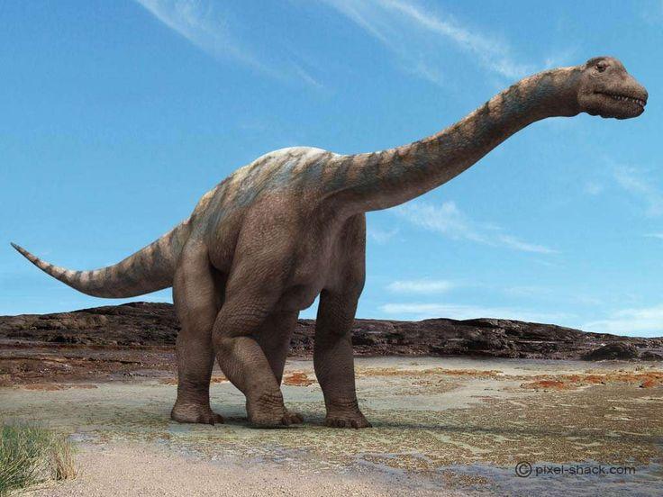 Les dinosaures étaient-ils à « sang chaud » ou à « sang froid » ? Selon Jamie Gillooly et ses collègues de l'université de Gainesville, en Floride, qui publient les résultats de leurs travaux dans Plos Biology, tout dépendait de leur taille !  Il...