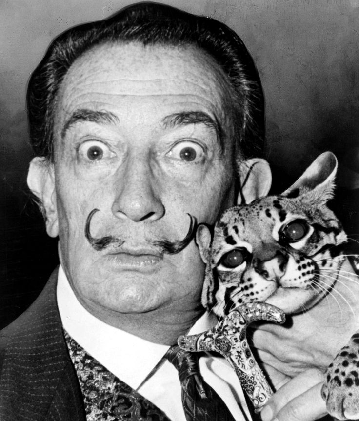 Salvador Dalí and his Ocelot, Babou. He traveled everywhere with his feline