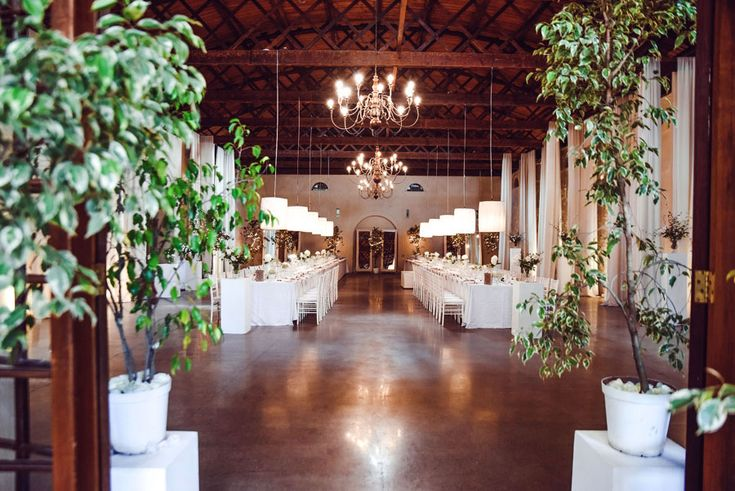 Wedding by Royal Blu / Photographer: Unknown / Venue: Nooitgedacht Wine Estate