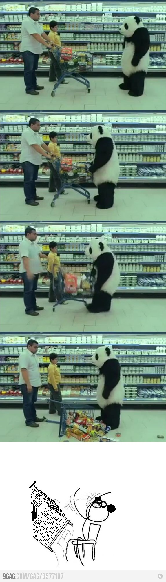panda is going mad