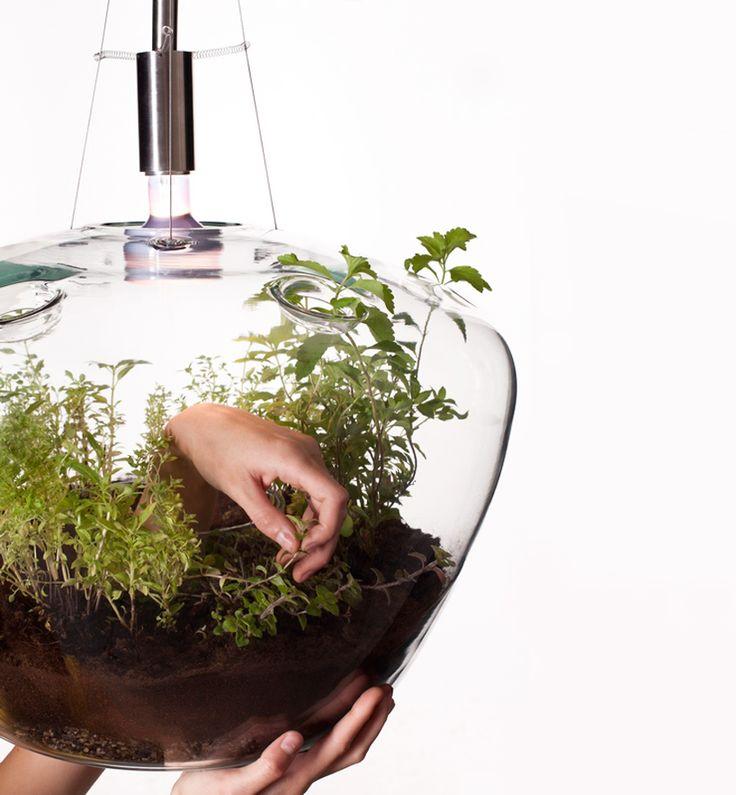 glass greenhouse lamp