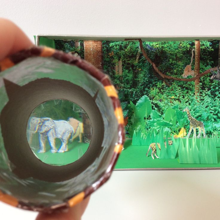 use magnifying lens to spot the jungle creature we used magnifying paper, a shoebox and coloured in animals to spot