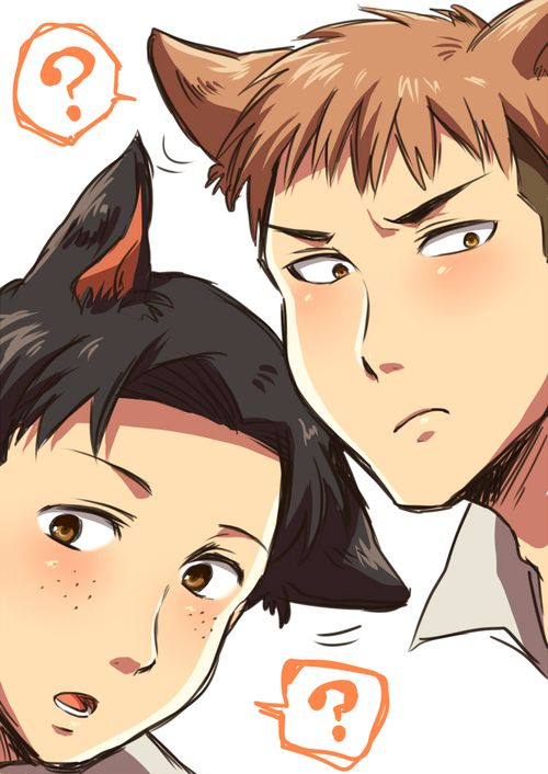 marco x jean shingeki no kyojin manga amp anime