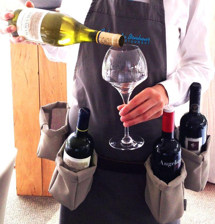 NOOBLU Wine Belt