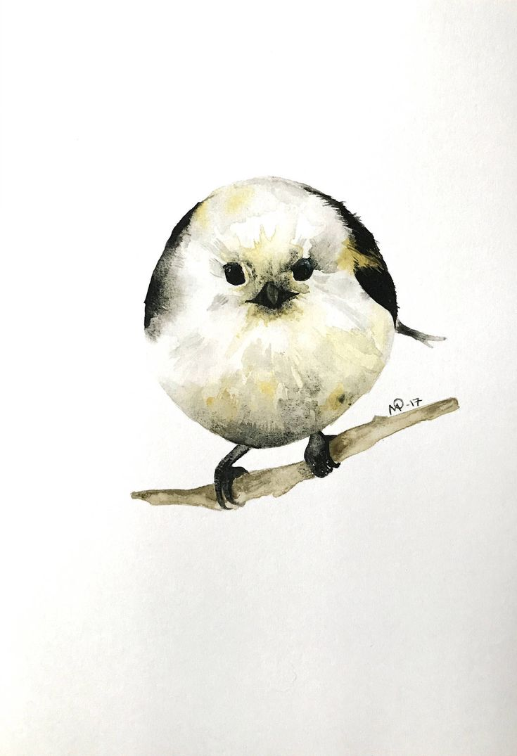 Excited to share the latest addition to my #etsy shop: watercolor long-tailed tit bird  painting / illustration print.